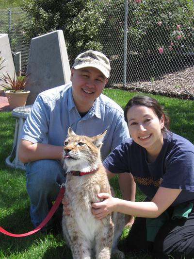 George Fan, Laura Shigihara, Siberian Lynx